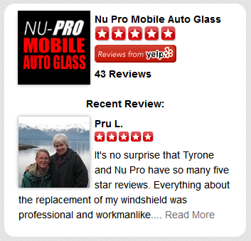 Check Out Nu-Pro on Yelp